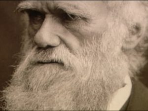 Post-Darwinism: The New Synthesis