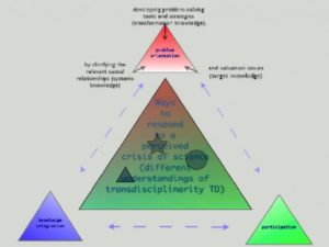 The Long Way from Non-Reductionism to Transdisciplinarity: Critical Questions about Levels of Reality and the Constitution of Human Beings
